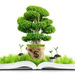 Author Money Tree